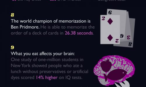 our-brain-one-page-infographic