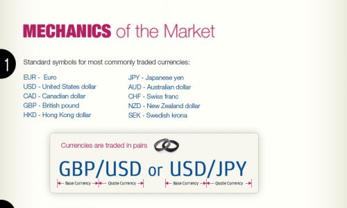 Forex Market Explained Infographic