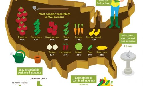home_gardening_infographic_0