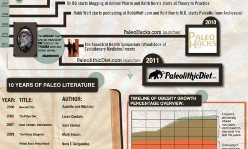 Paleolithic Diet Infographic