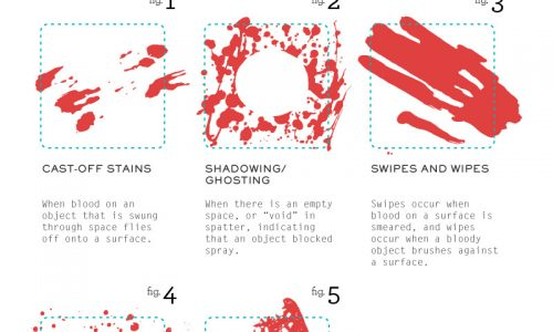 Bloody Mess Infographic