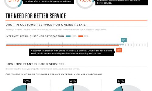 Online Customer Infographic