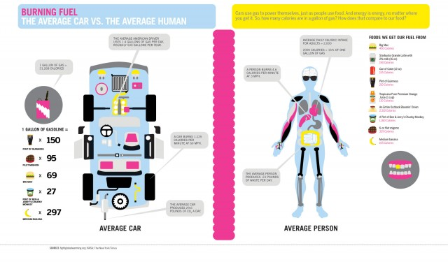 Burning Fuel The Average Car vs. The Average Human
