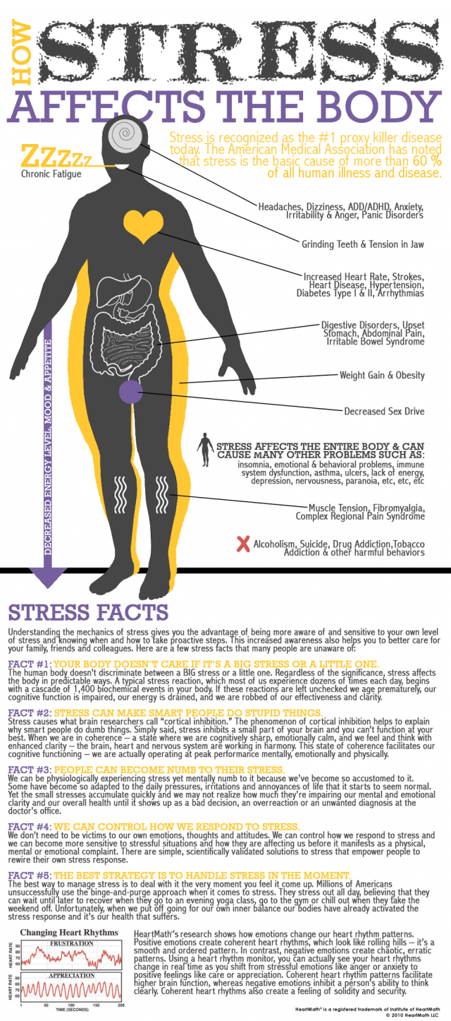 infographic-stress-effects-640x1446