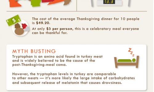 Turkey & Travel How We Celebrate Thanksgiving