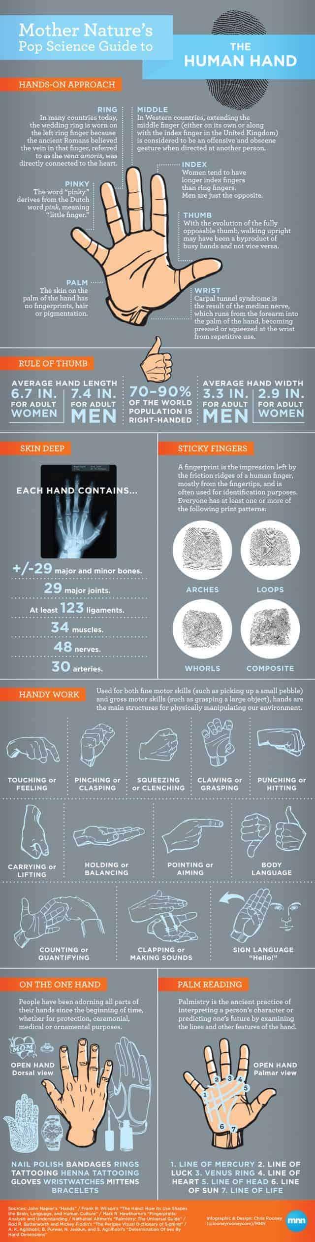 the-human-hand-640x2520