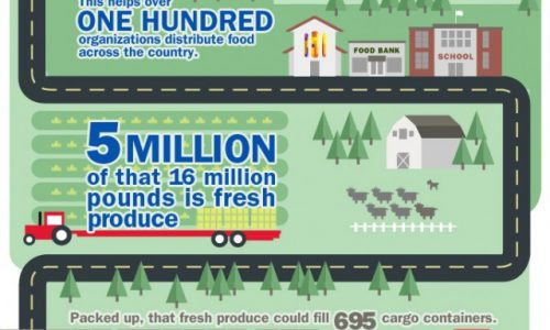 HUNGER_RELIEF_infographic-640x2227