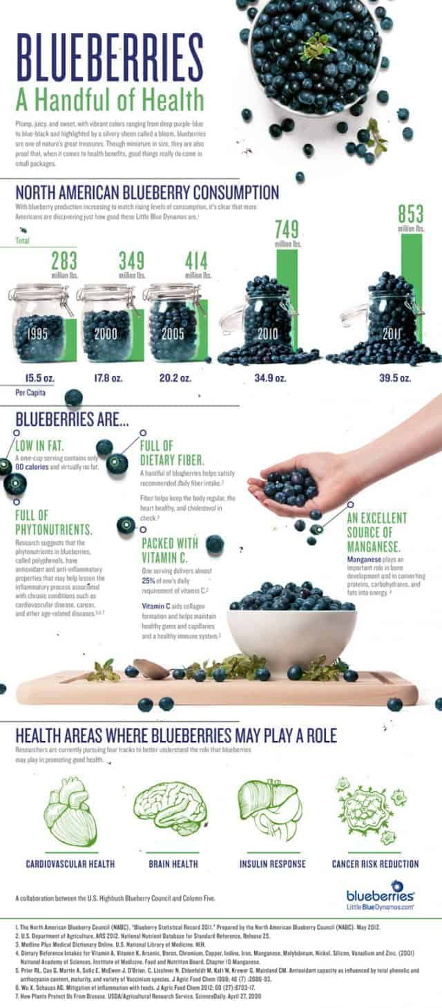 Blueberries A Handful of Health