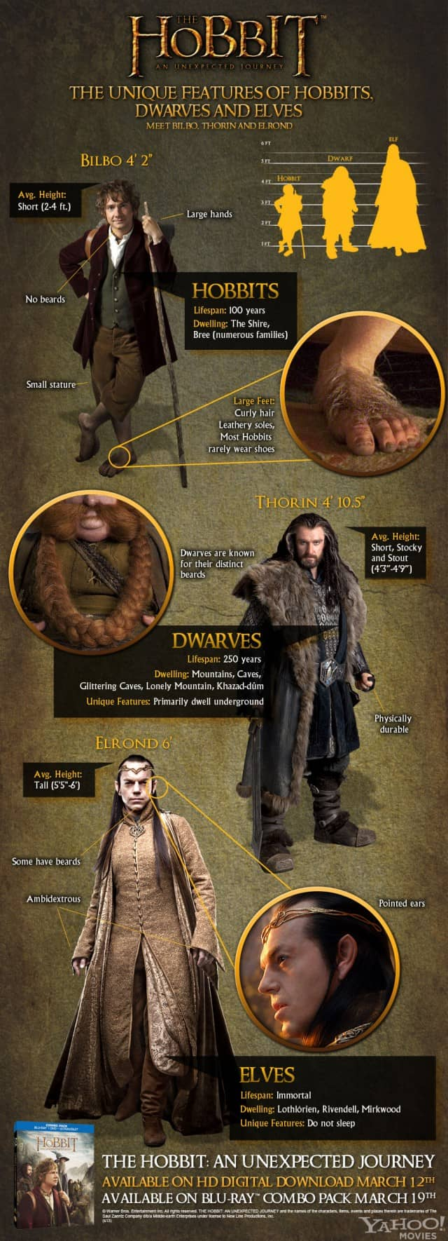 hobbit-infographic-full900-jpg_223713-640x1770