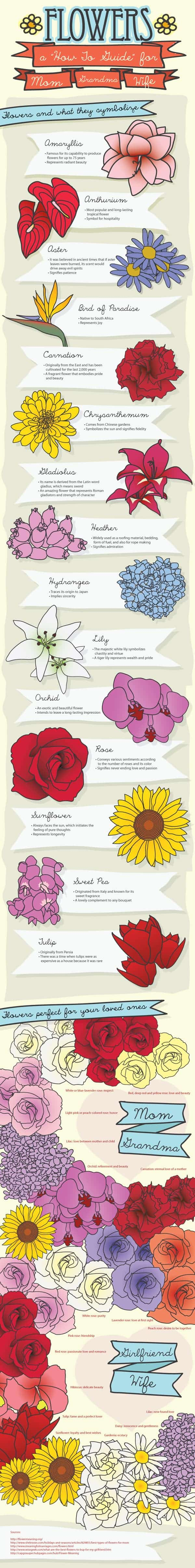 Flowers and What They Symbolize