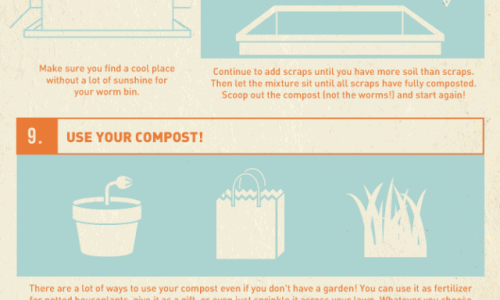 How to Compost in Your Apartment | Daily Infographic