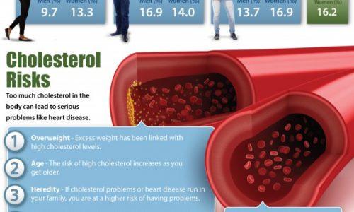 cholesterol-640x1778