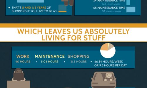 Living with Less Infographic
