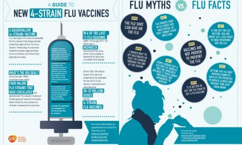 Flu Guide Infographic