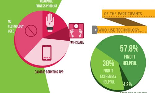 Who's Sticking to Their Diet Infographic