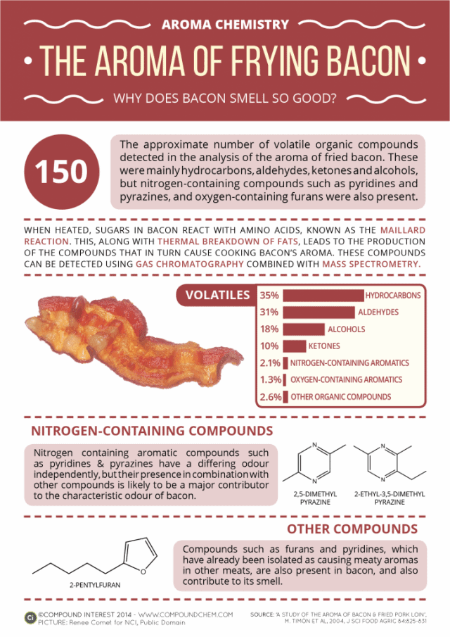 Aroma Of Frying Bacon Infographic