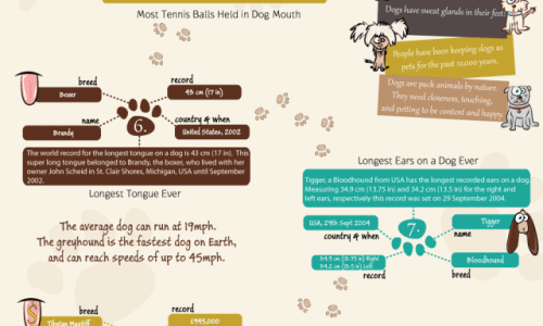 Dog-World-Records-640x2622