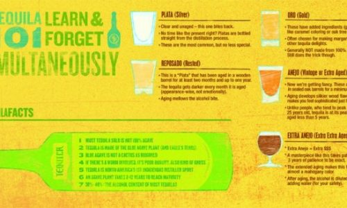 Tequila 101 Infographic