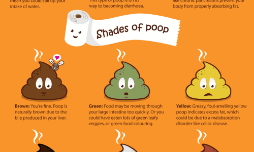 What's Your Poop Telling You