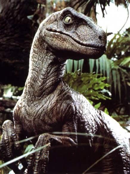 raptor-dinosaur