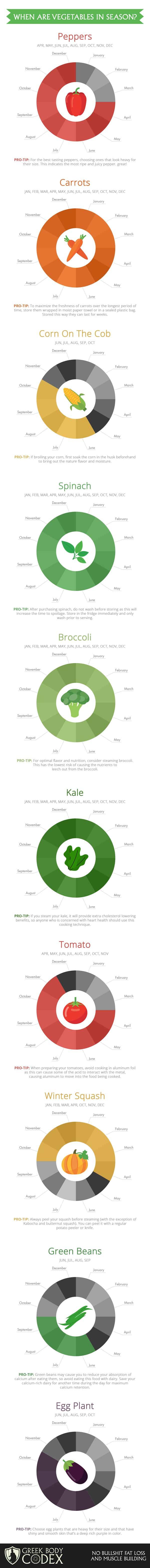 Vegetables Season Infographic