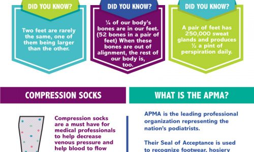 Happy_Feet_Infographic_Approved