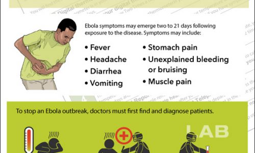 ebola-cdc-information-infographic-141024b-02