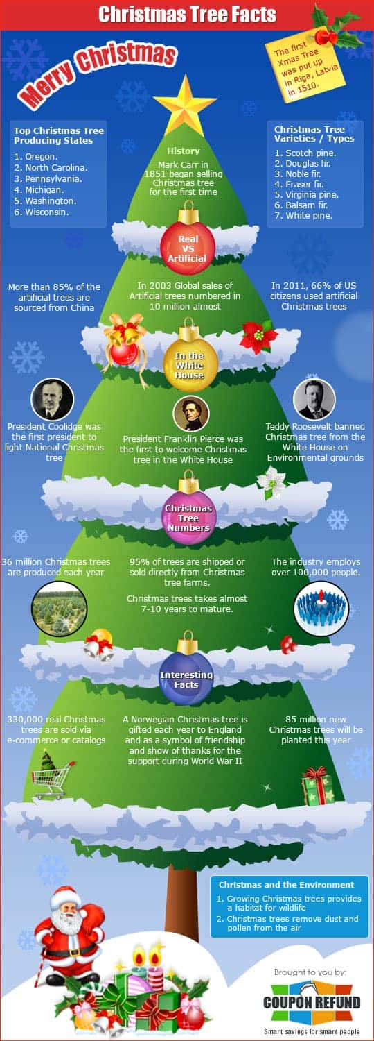 Christmas Tree Facts | Daily Infographic
