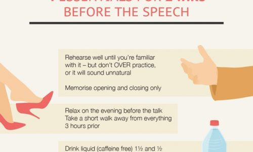 cheat-sheet-public-speaking-small (1)