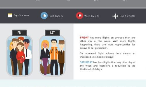 How To Avoid Flight Delays Infographic