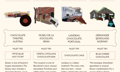 Chocolate Lover's Travel Guide Infographic