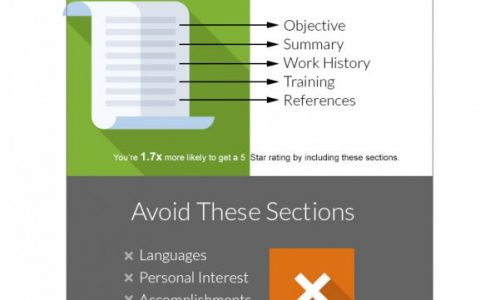 Perfect Resume Infographic