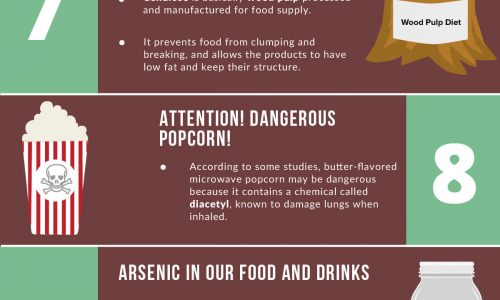 14-bizarre-ingredients-hidden-in-your-food-labels-infographic