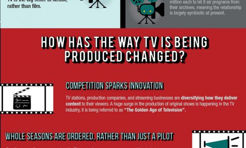 The Netflix Effect Infographic