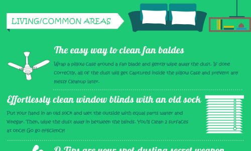 how-to-clean-your-house-in-half-the-time-infographic