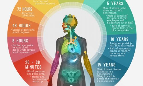 how-quitting-smoking-changes-your-body_545aab0346ef3_w900 (2)