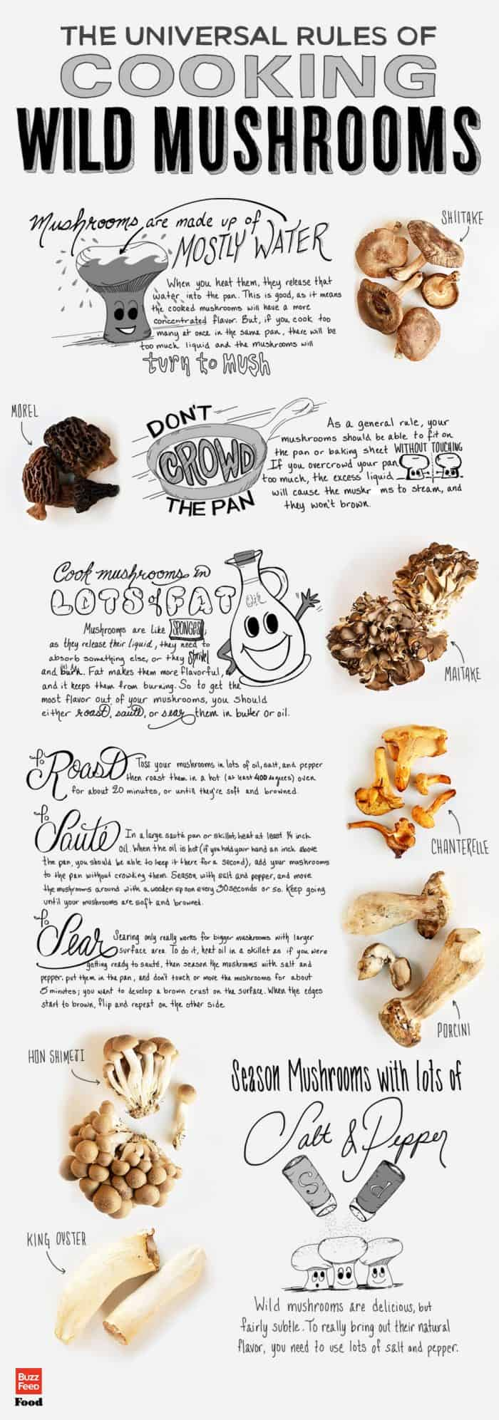 Rules of cooking wild mushrooms infographic