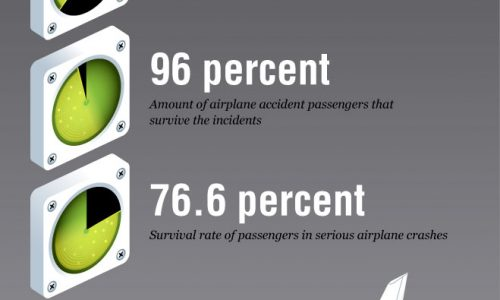 Crash Course in Airplane Safety Infographic