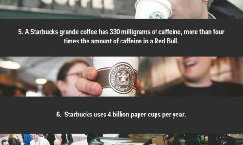 11 Facts About Starbucks Infographic