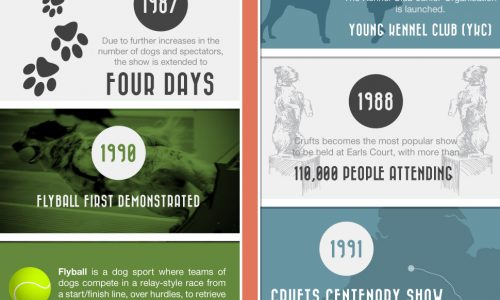 History-of-Crufts