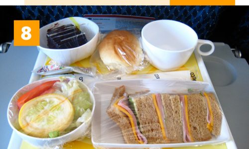 A Global Guide to Airplane Food Infographic