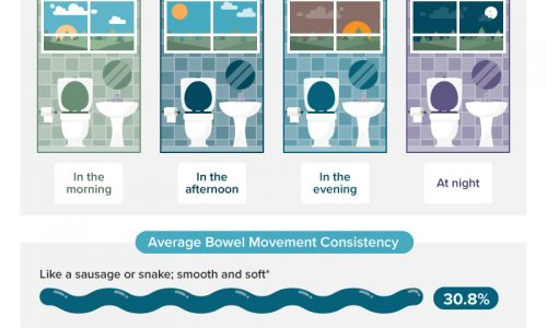 Average American Bowel Habits Infographic