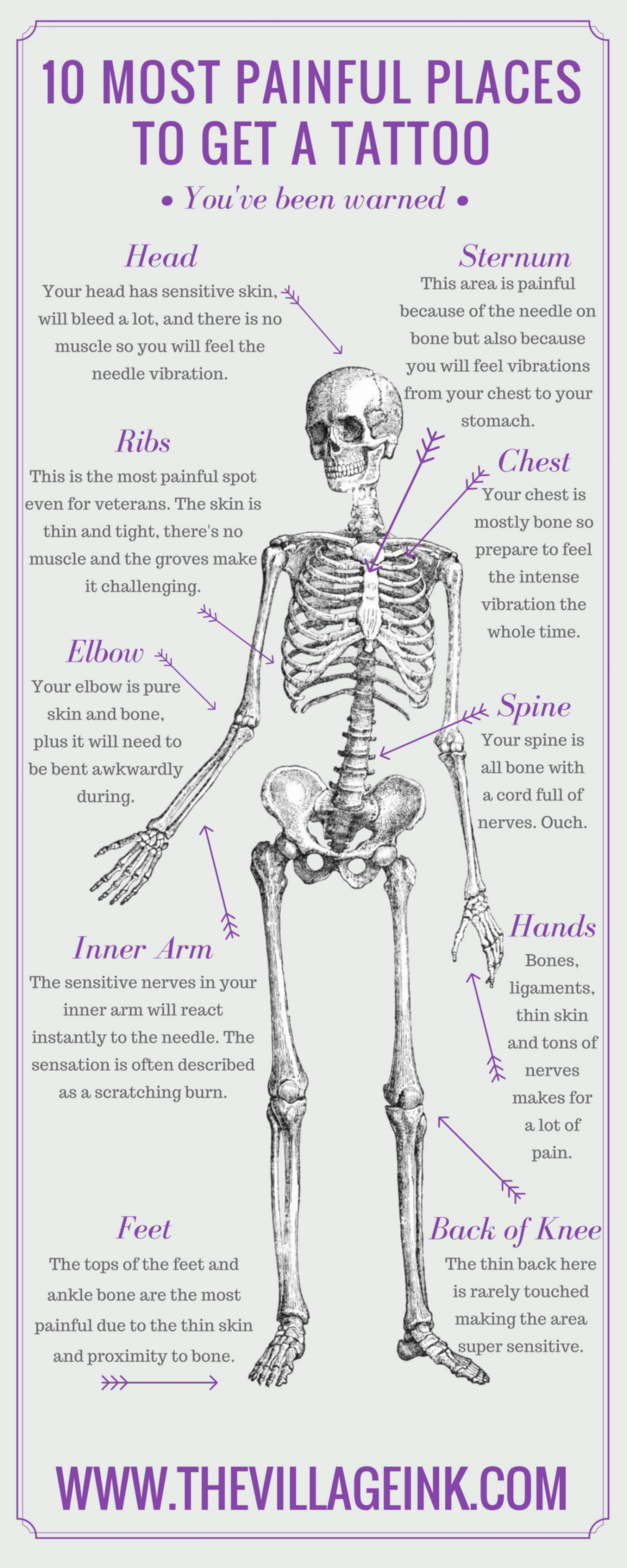 Here Are The Most Painful Spots To Get A Tattoo Daily Infographic - How much is the human body worth infographic
