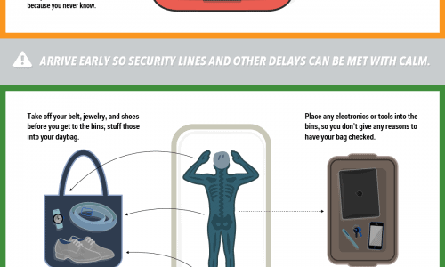 tips on How To Fly Like A Pro infographic