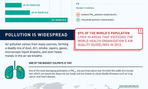 Infographic showing how air pollution affects our health and our economy.