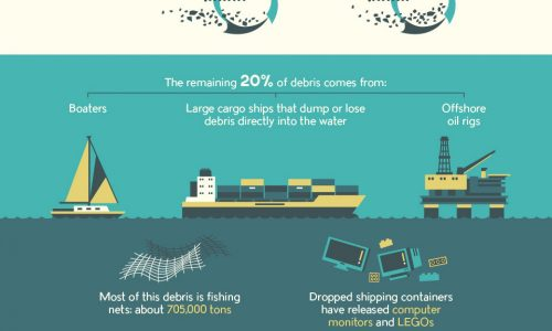 Plastic Is Slowly Ruining Our Oceans––Here's How