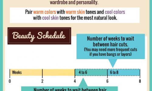 A guide to help decide your next hairstyle.