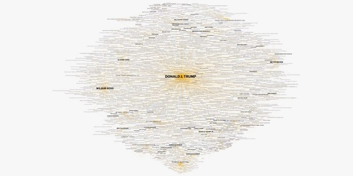 Donald Trump Business Empire Network