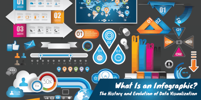 what is an infographic header