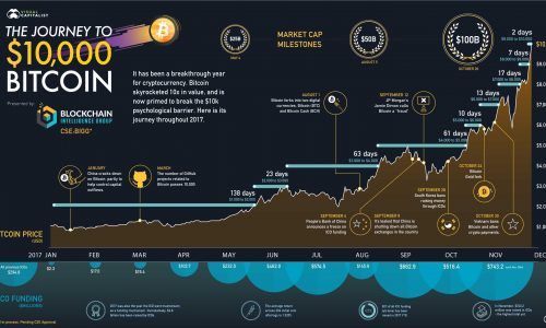 The rise of the $10,000 bitcoin infographic.